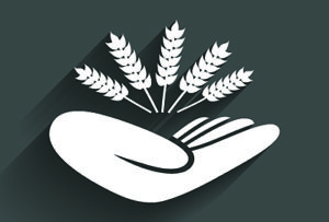 Crop Insurance Henry IL