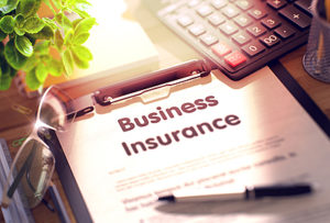Business Insurance Princeton IL